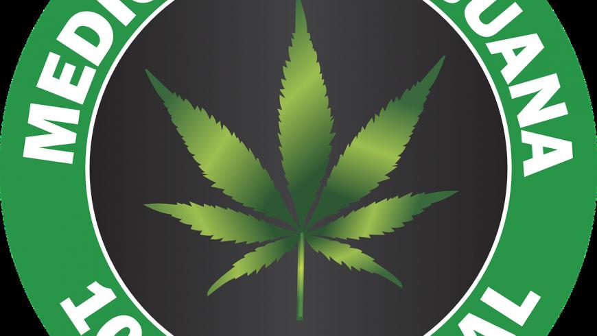 Darum werben Ärzte für Cannabis