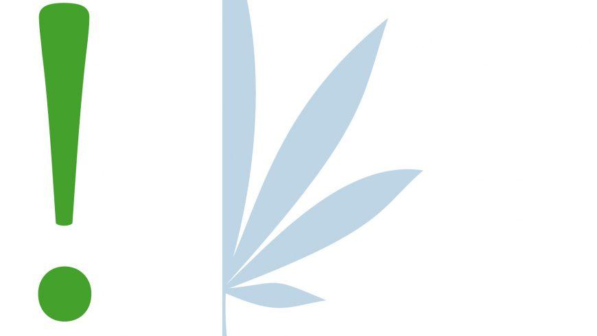 Der Cannabis Anwalt empfiehlt